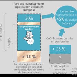 iMUO - Blog - 45 pourcent budget logiciels a risque - 01